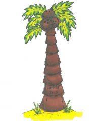 adventure children's book science image island image
